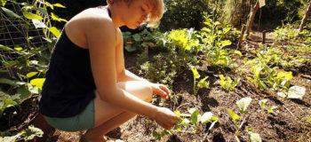 Une femme accroupie dans un jardin en Australie
