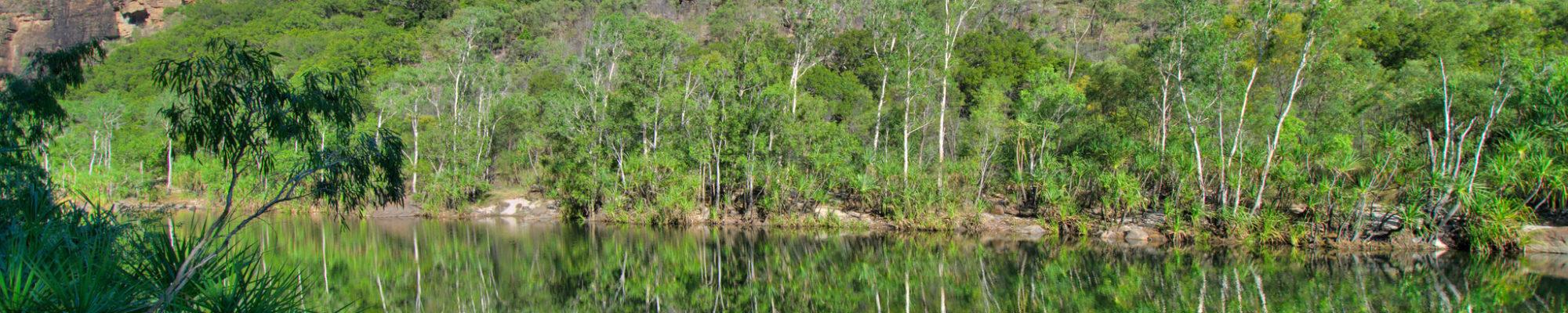 Le parc national de Kakadu