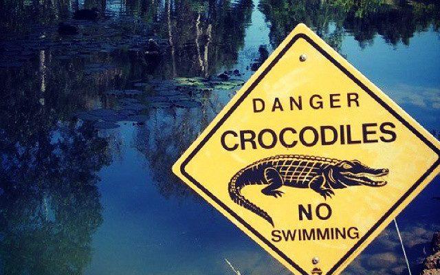 Mare avec un panneau jaune rectangulaire danger crocodiles