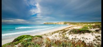 Kangaroo Island sur la Péninsule de Fleurieu