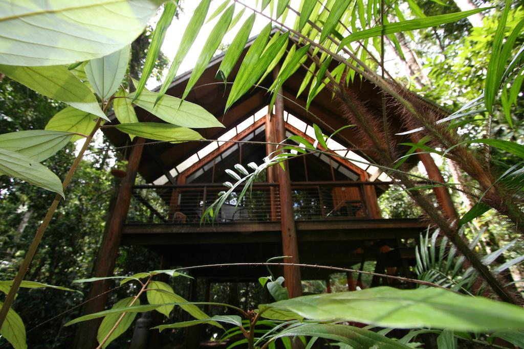 Photo : The Canopy Treehouses