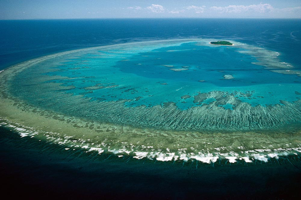 Grande barrière de corail Photo : Lock the Gate Alliance / flickr