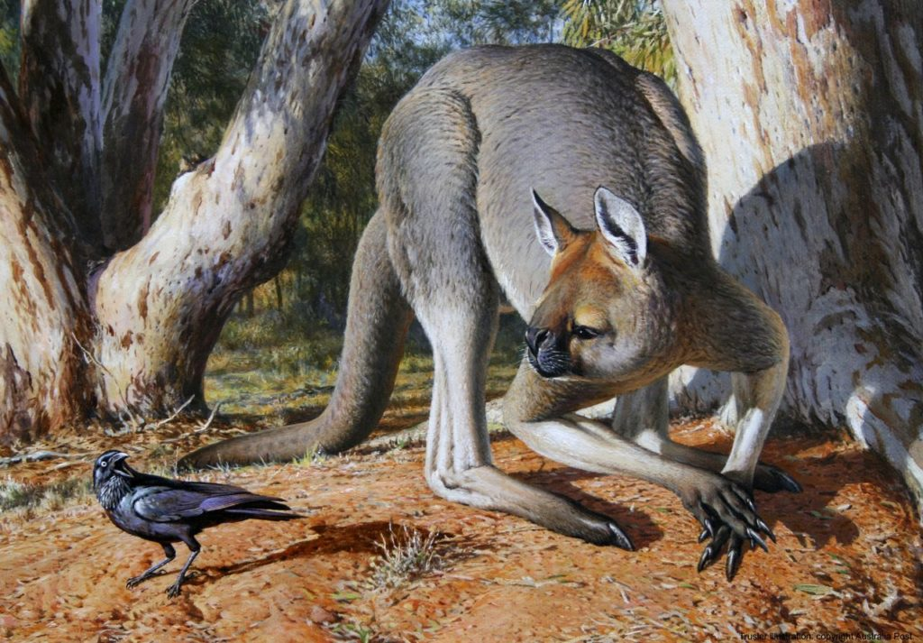 Procoptodon Goliah Photo : Peter Trusler / Australian Postal Corporation