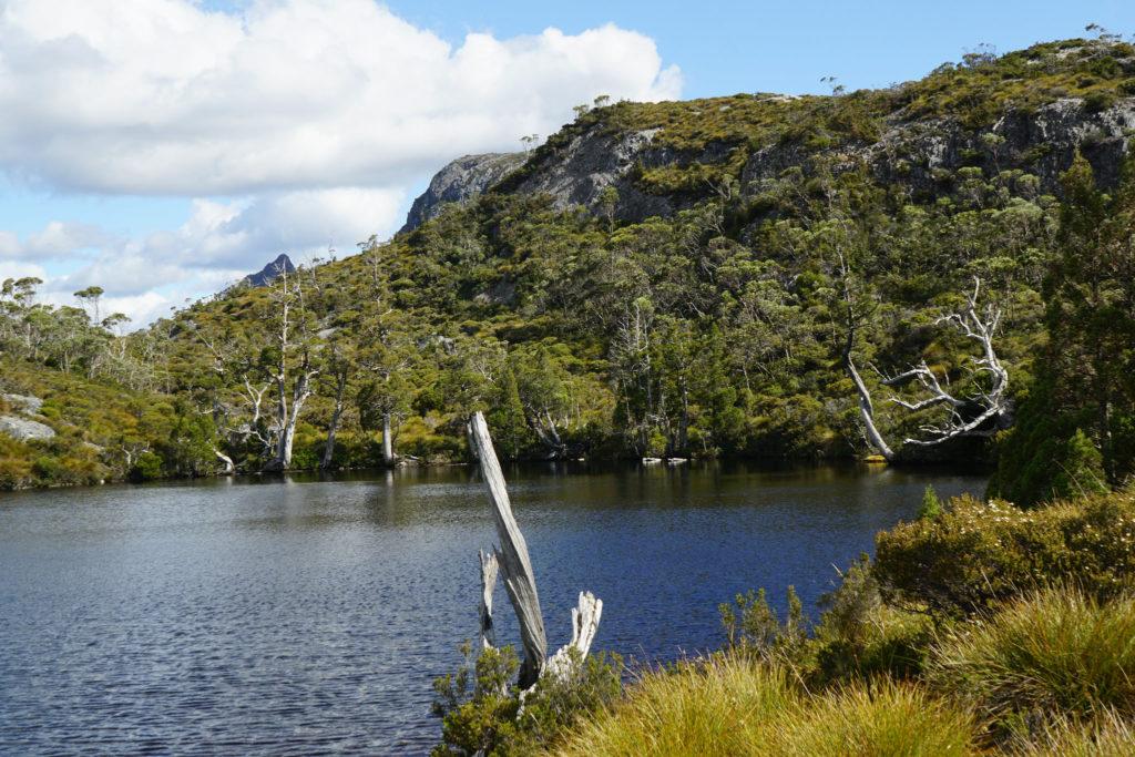 Lake St Clair en Tasmanie