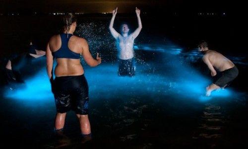 Un groupe de personnes se baignant dans les Lacs de Gippsland