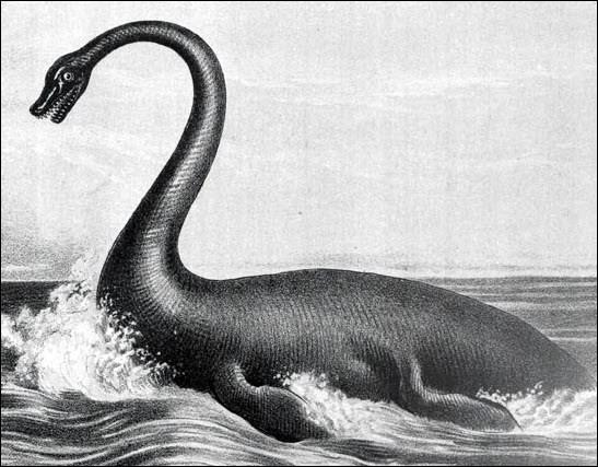 Légendes et monstre australiens : le Hawkesbury River Monster